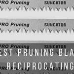Top 4 best pruning blades for trees